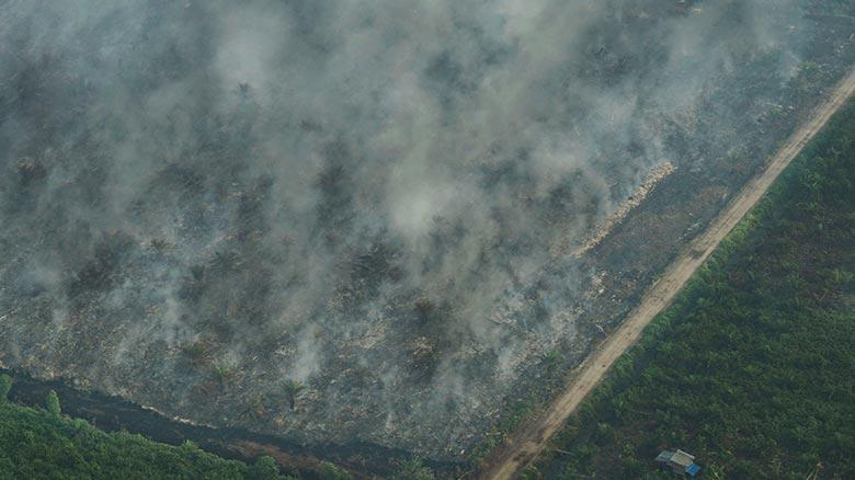 Wilayah Selatan Banyak Terbakar