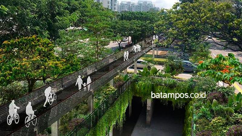 Singapura Bangun Sky Park di Kanal Bukit Timah