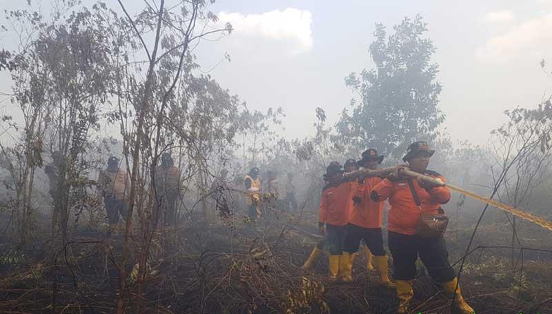 Satgas Tanggap Api Apkasindo bersama TNI-Polri Padamkan Karhutla
