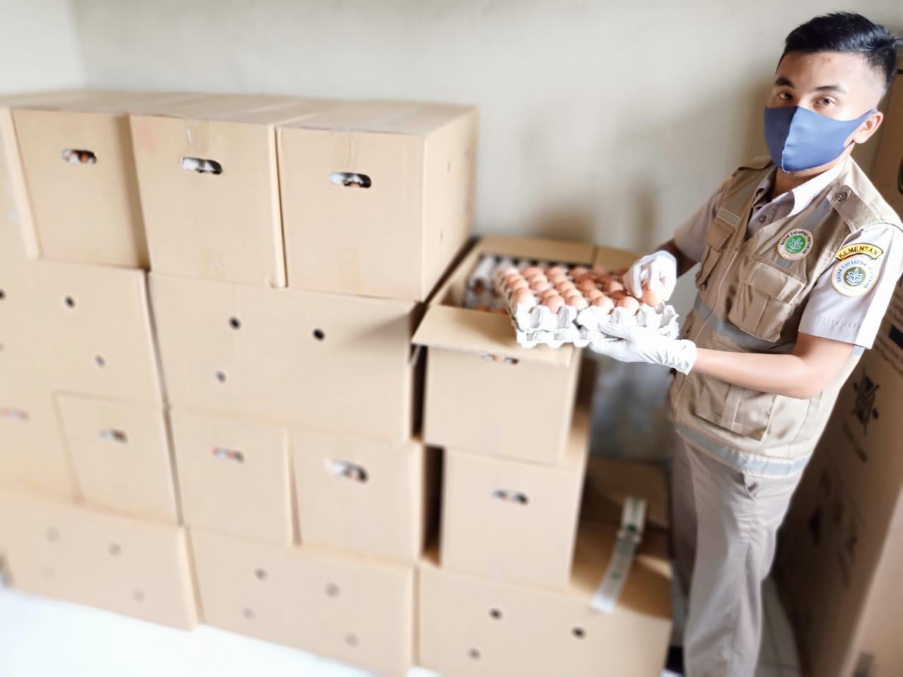 Ribuan Butir Telur Ayam Impor dari Malaysia Masuk Riau Dicegat di Selatpanjang