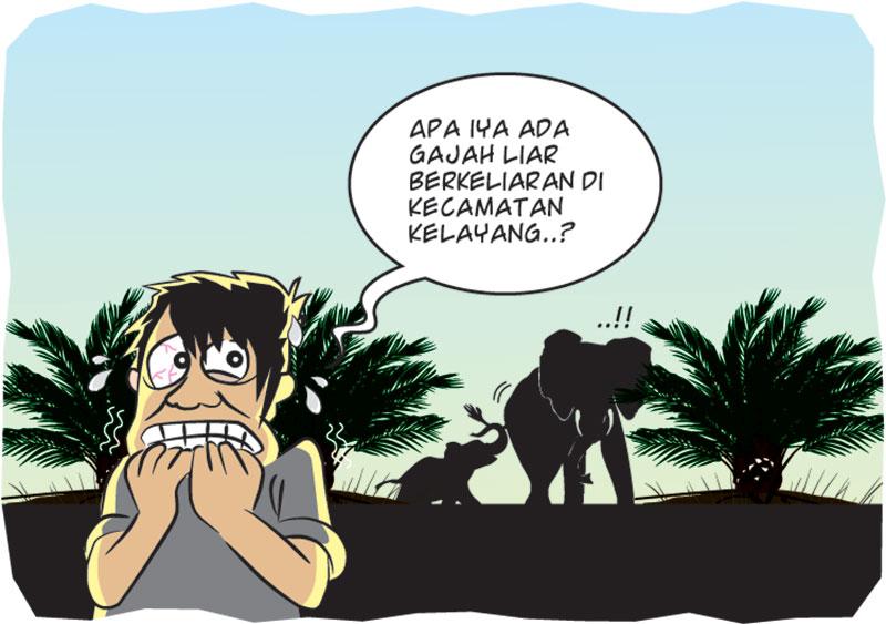 Gajah Rusak Perkebunan Warga