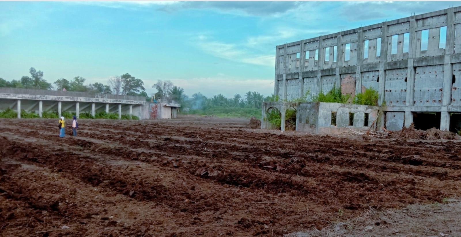 Sulap Halaman Stadion Termegah Meranti Jadi Lahan Pertanian
