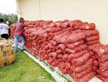 Polres Siak Amankan 2 Ton Bawang Merah Ilegal