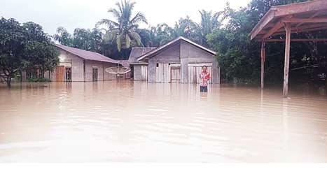 Empat Desa di Pelalawan Banjir