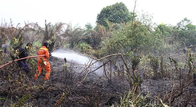 Lahan Terbakar, Dua  Rumah Warga Nyaris Hangus