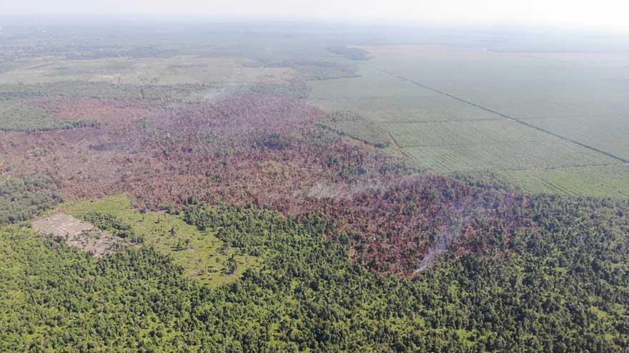 Sudah 351 Hektare Lahan Terbakar
