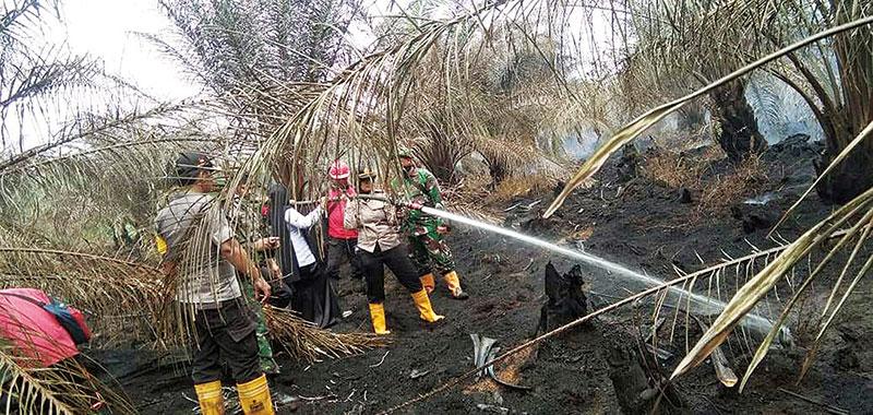 Bertambah, 9 Korporasi Jadi Tersangka, 33 Disegel Soal Kebakaran Hutan