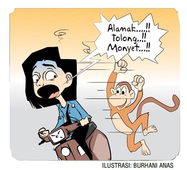 Dikejar Monyet