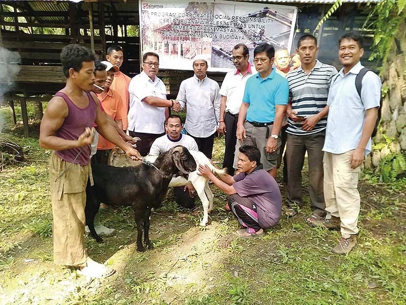 PT BWL Berikan Bantuan Pakan Ikan dan Ternak Kambing Untuk Masyarakat di Desa Sekijang
