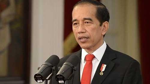 Presiden Ingatkan Kepala Daerah Prioritaskan Pencegahan Karhutla