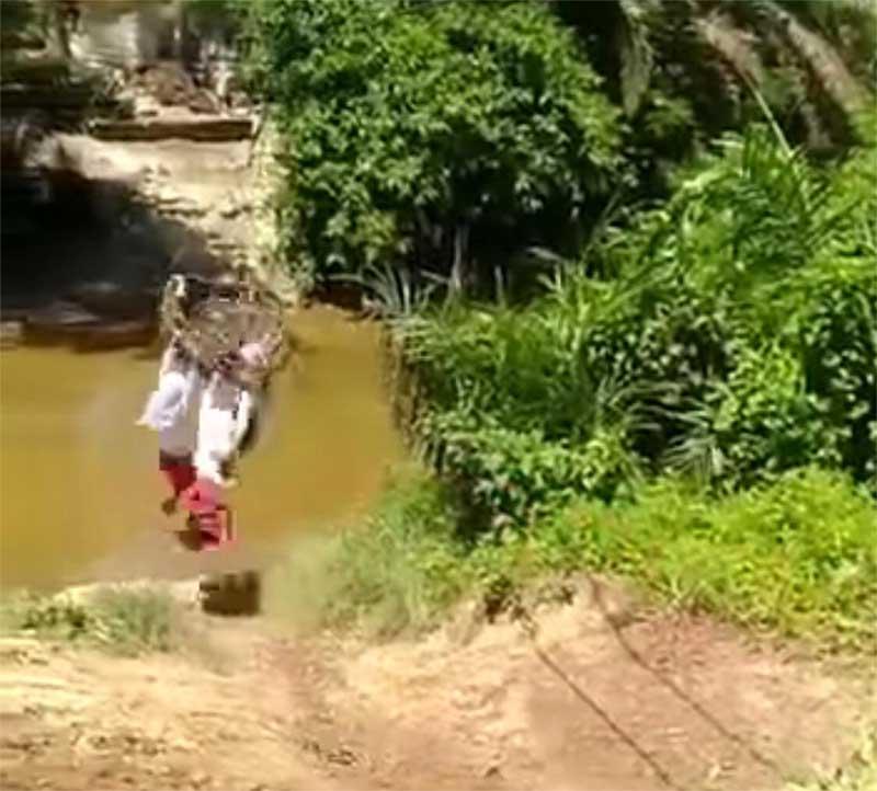Ini Fakta Anak Sekolah Seberangi Sungai di Kampar Pakai Keranjang