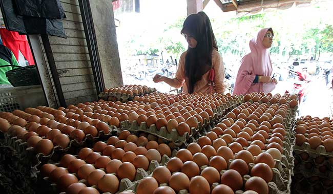 Harga Telur Turun, Bawang Melambung