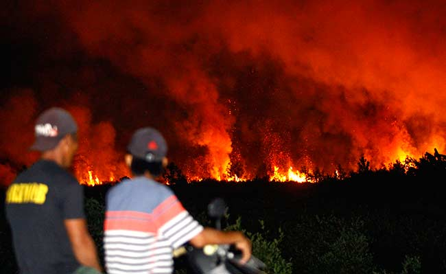 7 Hektare Lahan Terbakar