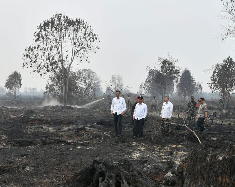 Pemprov Riau Harus Belajar dari Pengalaman
