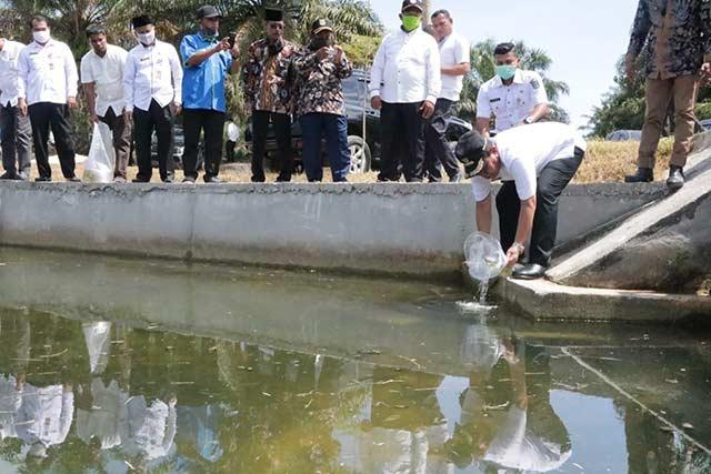 Dorong Masyarakat Gemar Makan Ikan