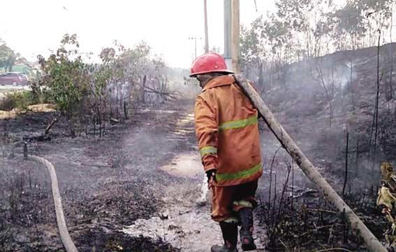 Lahan Terbakar Dekat Trafo