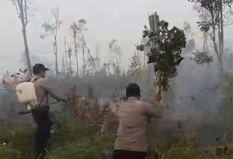 200 Ha Lebih Lahan Terbakar di Satu Kecamatan