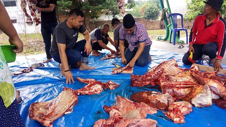 BPJS TK Bagikan 250 Kantong Daging Kurban