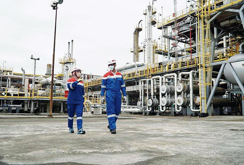 Produksi D-100, Pertamina Harus Gunakan Bahan Baku dari Riau
