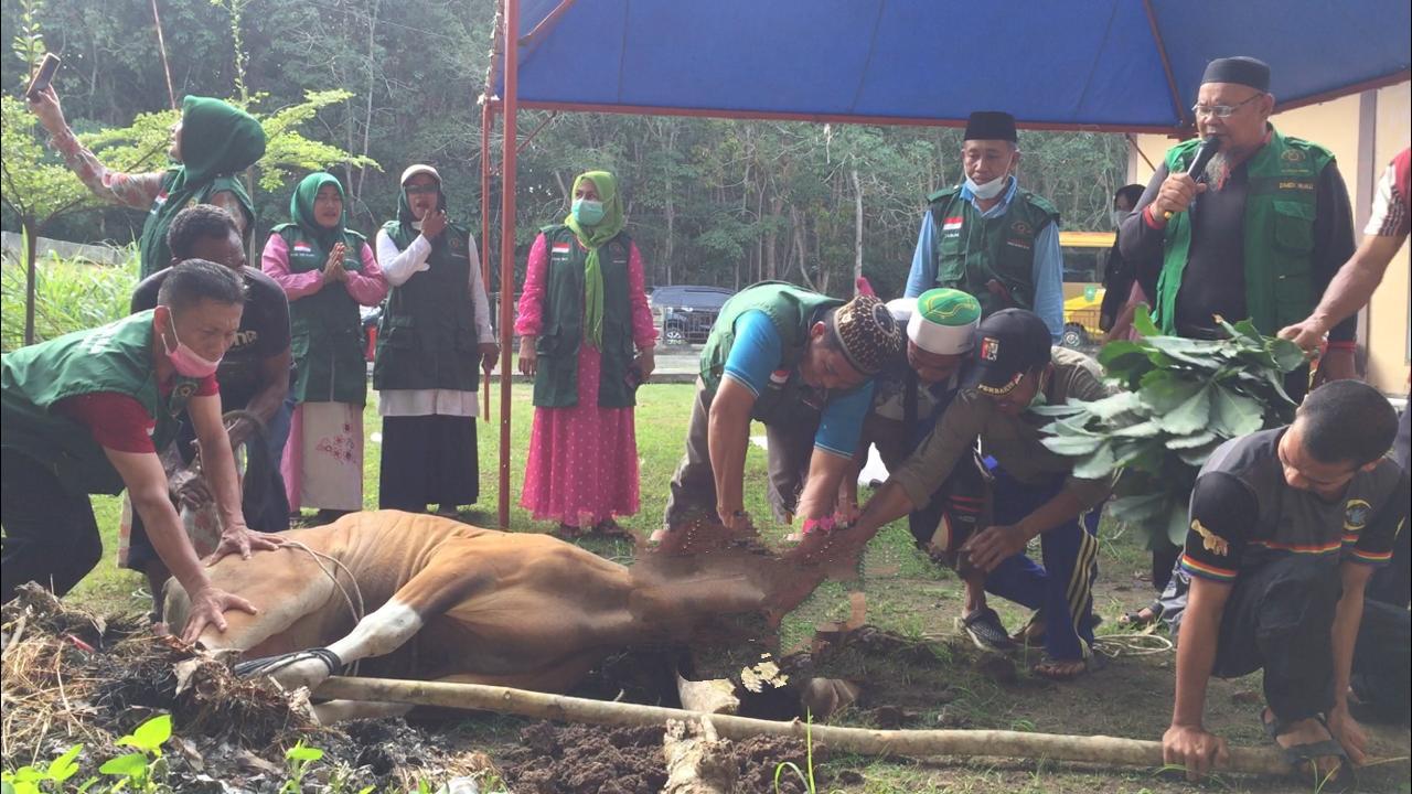 DMDI Riau Potong Sapi Kurban di Kampung Mualaf Jangkang