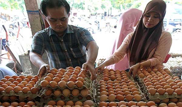 Pedagang Makanan Kurangi Pemakaian Telur