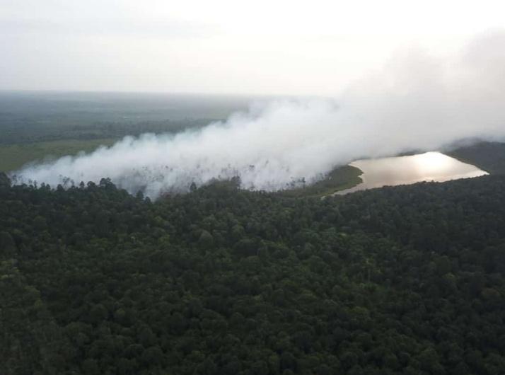 Sehari Pejabat BPBD Diganti, Api Membara di Hutan Lindung Desa Penyagun