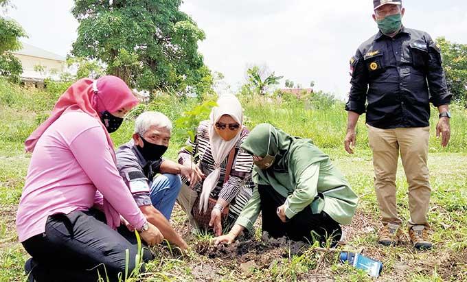 5.000 Pohon Sirsak Madu Ditanam