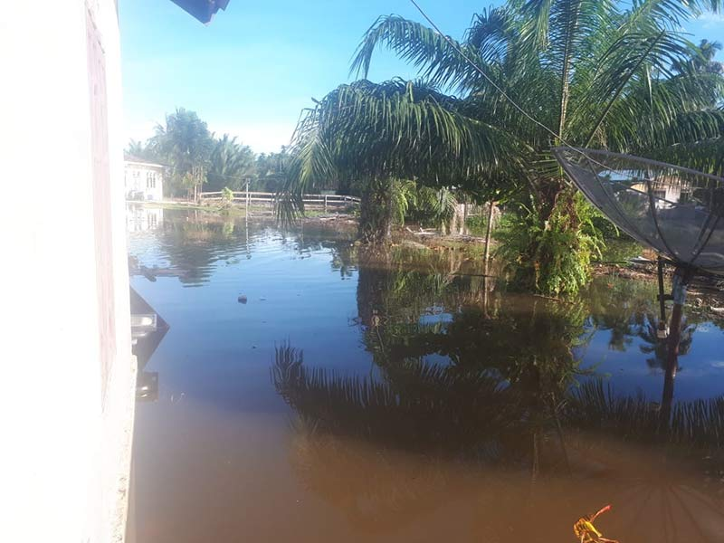 Banjir di Pulau Rupat