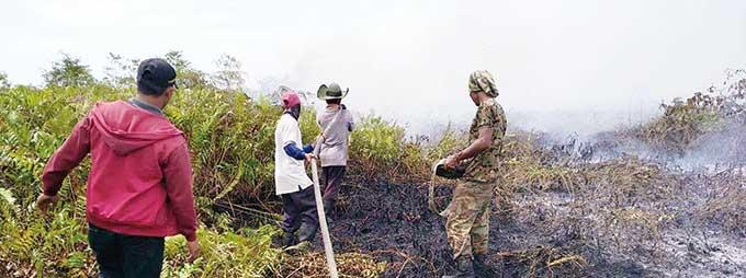 Api Masih Menyala di 2 Kecamatan Bengkalis