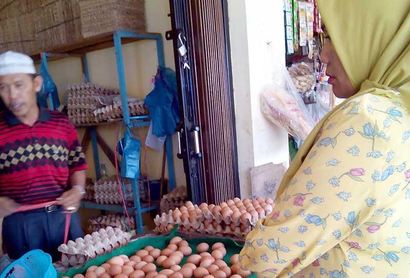 Teliti Memilih Telur