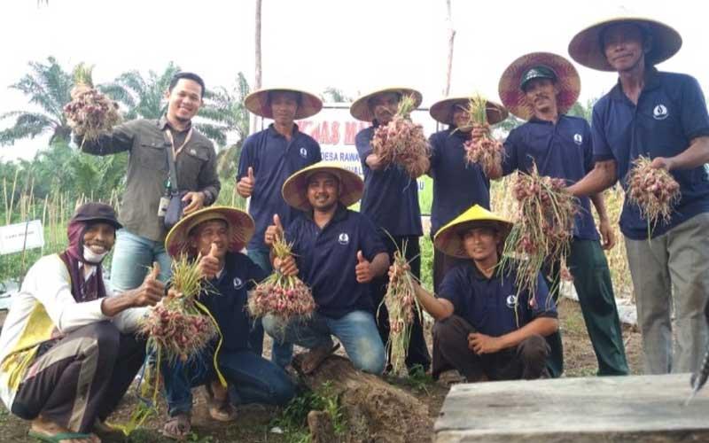 Koperasi Petani Gambut Menjadi Solusi Penggerak Ekonomi Masyarakat