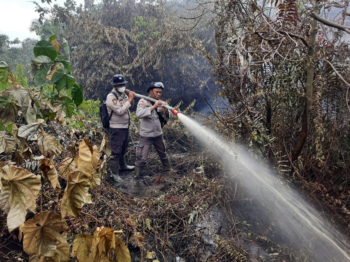 Diguyur Hujan, Kobaran Karhutla di Pulau Bengkalis Berkurang