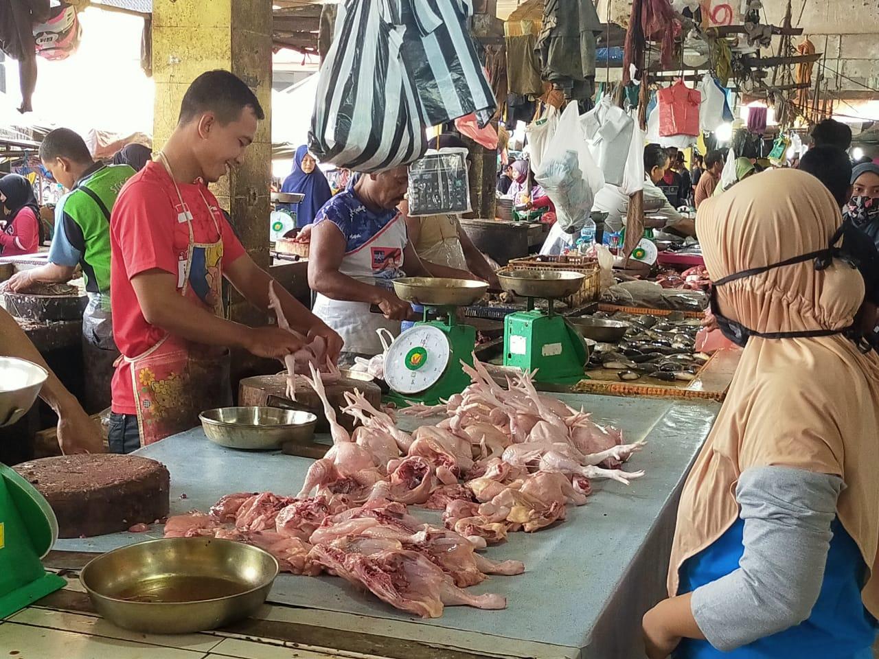 Harga Ayam Potong Tembus Rp42 Ribu per Kg di Inhu