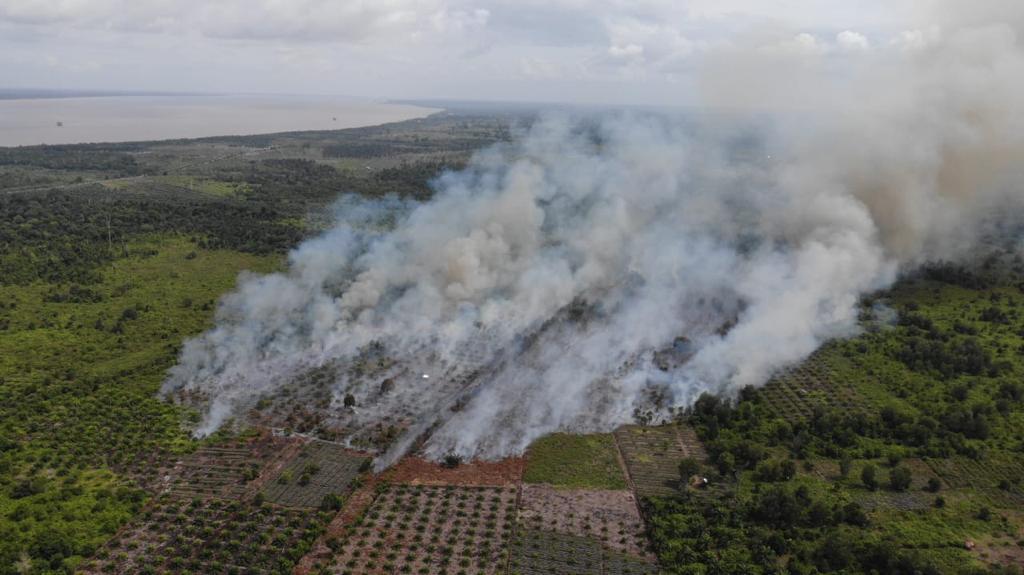 Kebakaran Lahan Gambut di Siak Penyumbang Hotspot di Riau Hari Ini