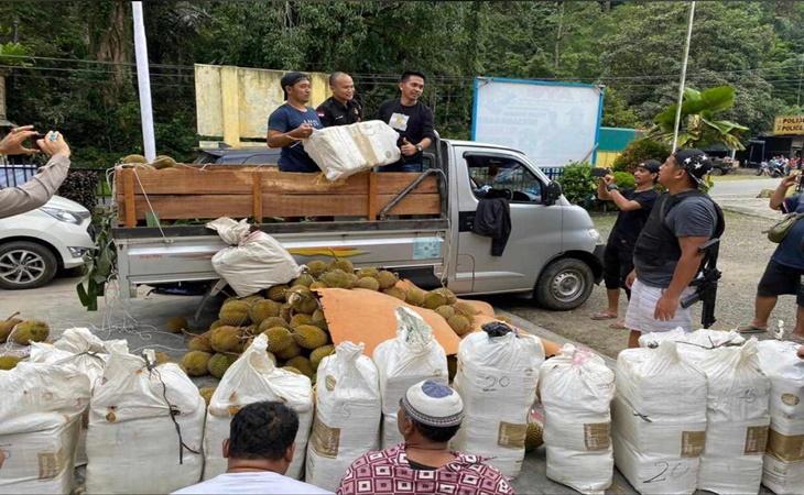 Polisi Amankan 254 Kg Ganja dari Tumpukan Durian
