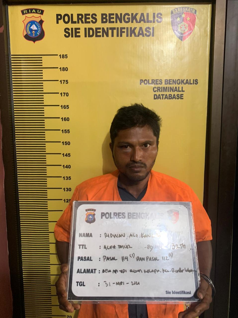 Edarkan Sabu 1,2 Gram, Kancil Ditangkap Polisi