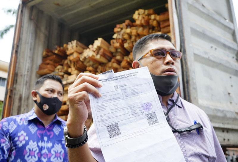 Ilegal Logging Marak di Kawasan SM Rimbang Baling