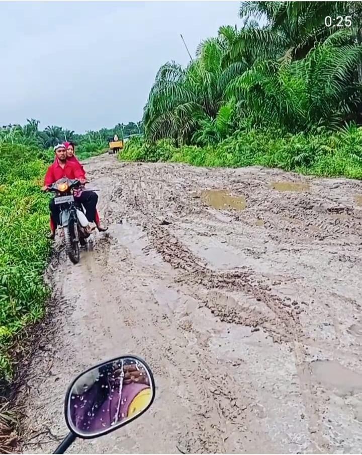 Jalan Lintas Desa Muara 2 Menuju Desa Sadar Jaya, Siakkecil Rusak Parah