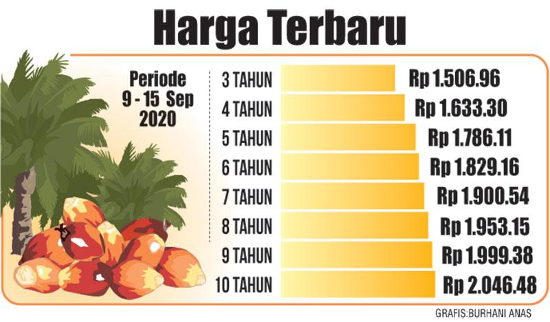 Harga TBS Kelapa Sawit Capai Rp2.046 per Kilogram
