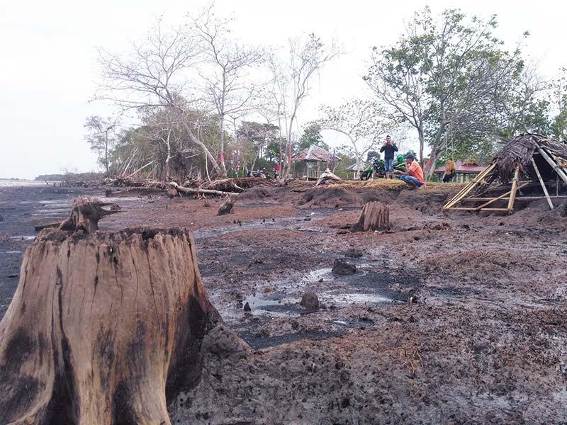 Abrasi Gerogoti Pulau Bengkalis