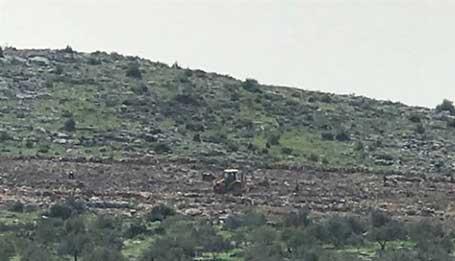 Israel Sikat 6,9 Hektare Lahan Milik Palestina