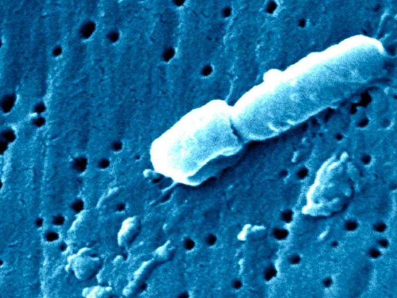 Tiga Orang Tewas akibat Kasus Virus Korona
