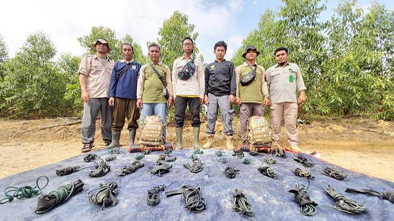 170 Jerat Harimau dan Gajah Ditemukan di Hutan Riau