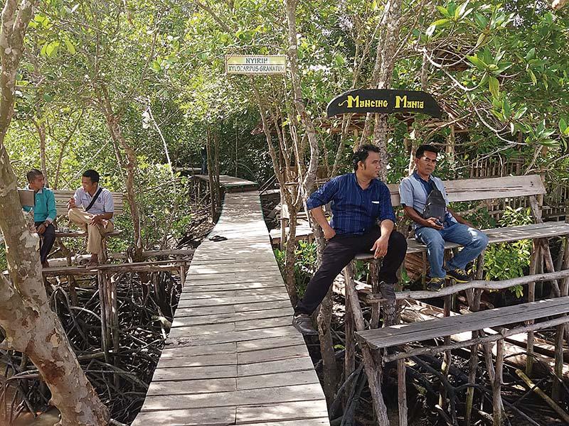 Destinasi Hutan MSB Sensasi Memikat Hati