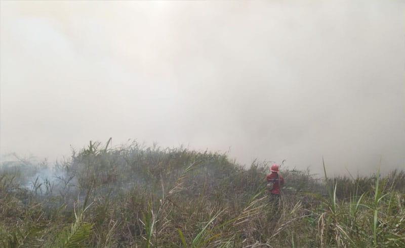 Tim Rayonisasi Berjibaku Padamkan Api di Pangkalan Terap