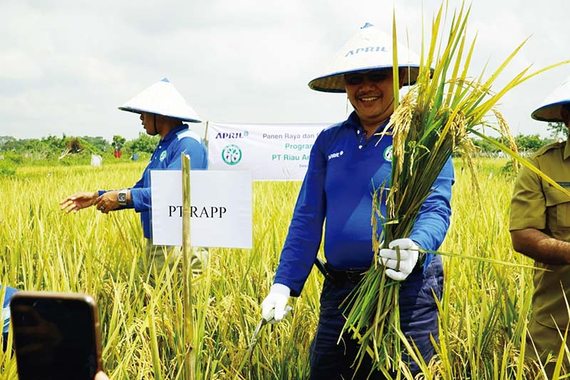 Sukses Bertani Tanpa Bakar