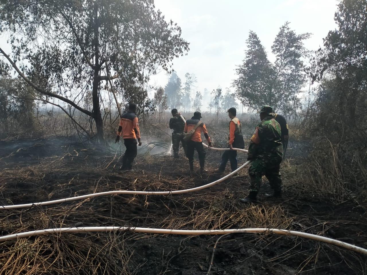 Kebakaran Hutan Lindung Pulau Rangsang Makin Meluas