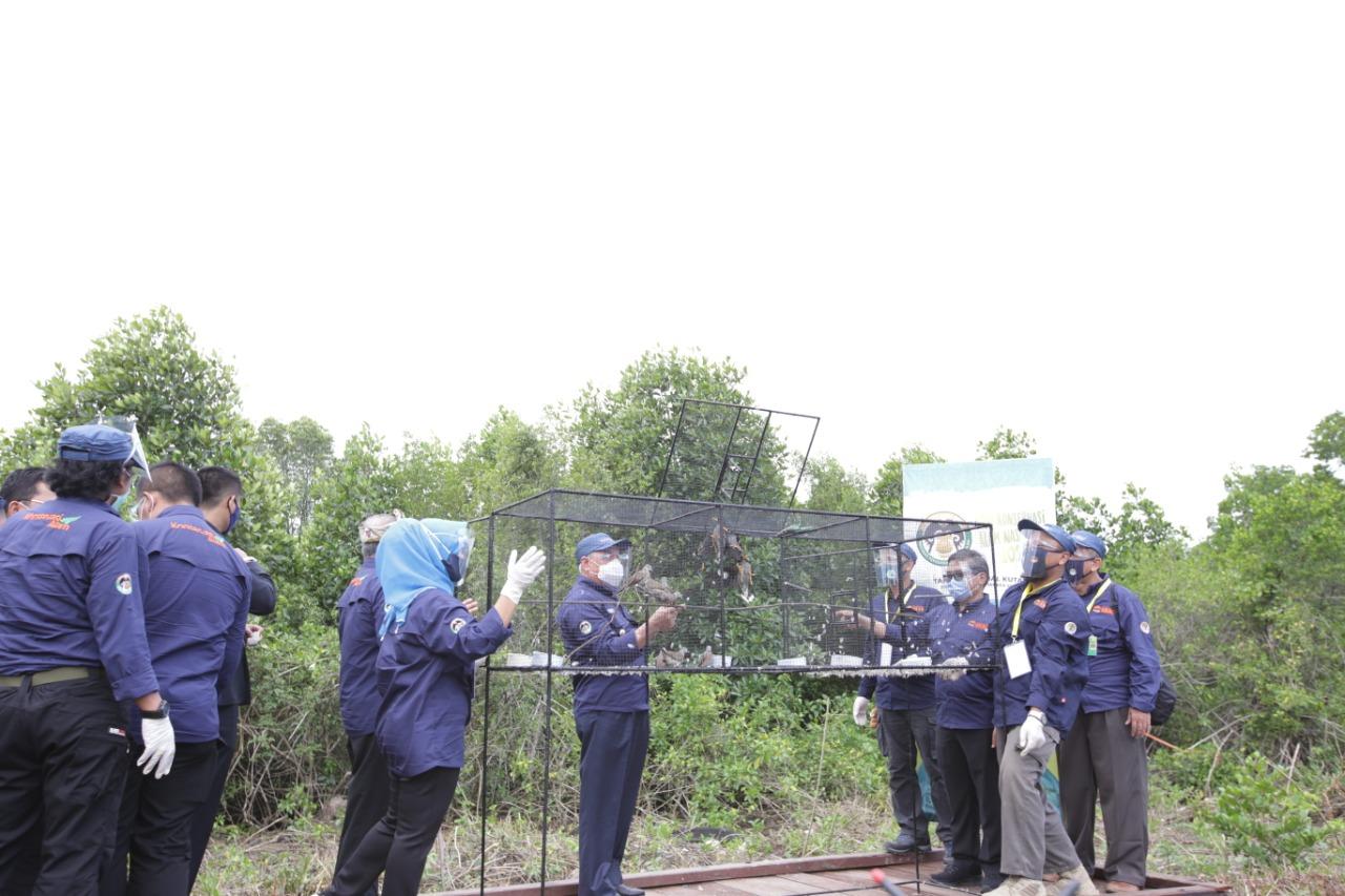 Jadikan Peringatan HKAN Upaya Pemulihan Lingkungan Pascacovid-19