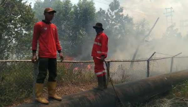 Warga Kelurahan Air Hitam Intai Pembakar Lahan