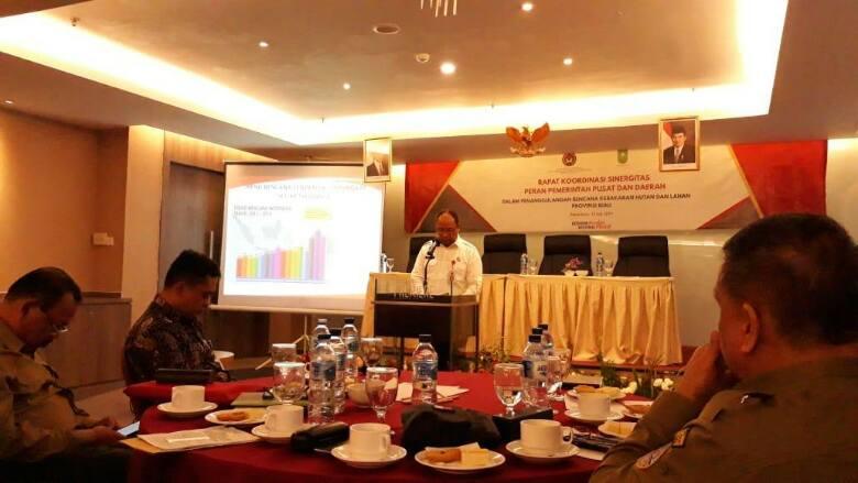 Sinergi Pemerintah Pusat dan Daerah Dalam Pencegahan Karhutla